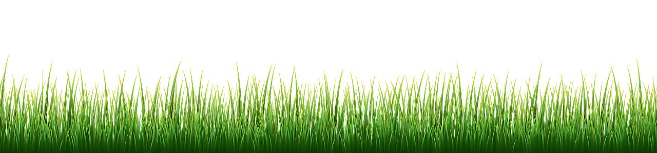 Banner_Taschen_Naturbewusst-wertvolle-Tragetaschen_Graspspier-Tueten_Gras-4