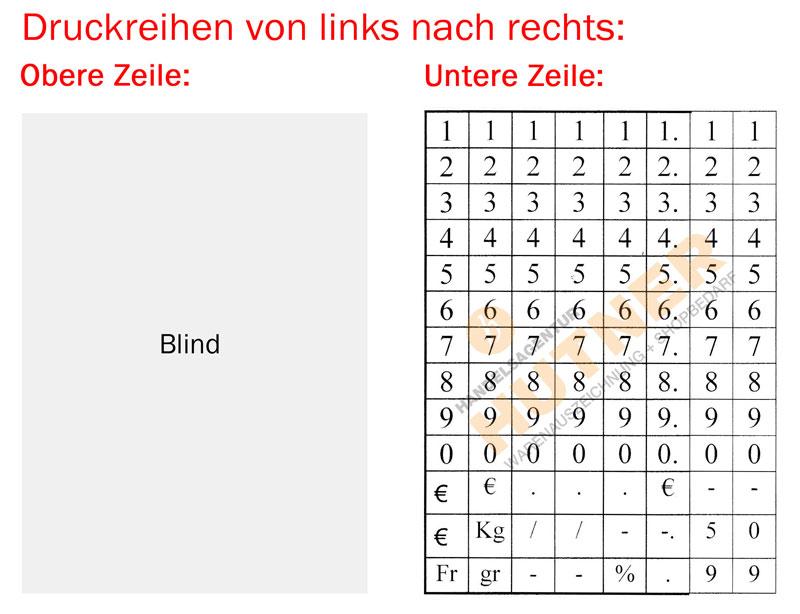 blitz-s8-layout5c764c9e4a4bb